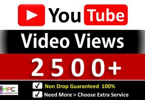 Instant 2500+ YouTube Video Views & 60 Likes, Good Retention, Non Drop Guaranteed