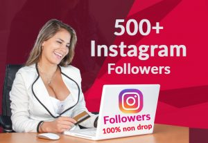 add 500+ Instagram followers 100% Non Drop Guaranteed (fast deliver)