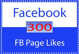 Facebook Page 300 Likes only for $ 5