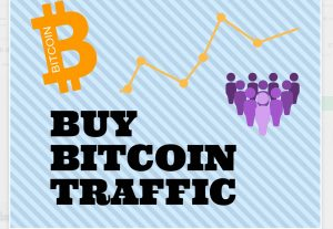 I will drive real crypto investors traffic to your ico crypto site