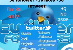 Twitter services: 30 followers +30 like +30 retweet for only 3$