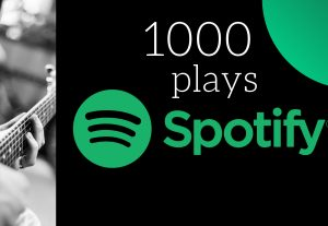 I Will Provide 1,000 Spotify Plays