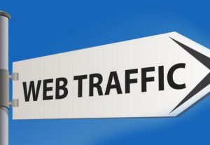I will do USA web traffic us long visit 2 min
