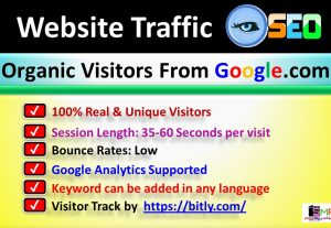 2000+ Premium WebSite ORGANIC Traffic / Visitor From Google.com of USA Country
