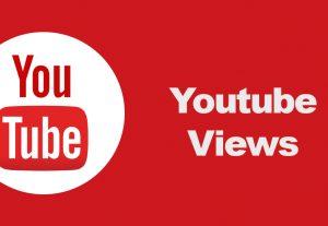 Organic Lifetime guaranteed Youtube video  views