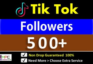 Get Instant 500+ Tik Tok  Followers in 24 Hours, Real Users, Guaranteed Non drop
