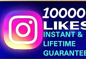 I will provide 10000+ instagram likes & life guaranteed
