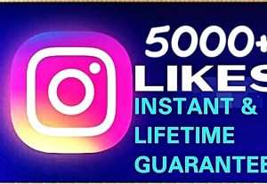 Provide 5000+ likes instant & lifetime guaranteed