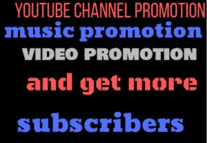 I will do professional and organic top youtube channel promotion