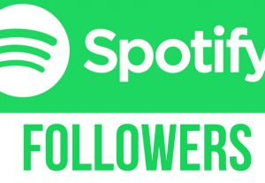 I will send you 3000+ spotify Artist followers