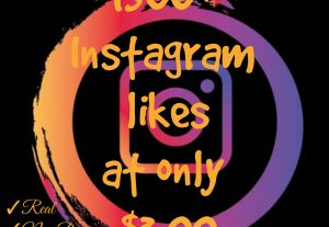 Promote your Instagram post with 1500+ likes for only $3.00, Real, Non Drop and 100% Organic.
