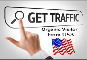 Give You  SEO Qualityful 2500 traffic from USA or social site