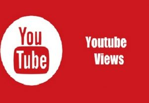 i will get you 1,000 youtube views to rank video