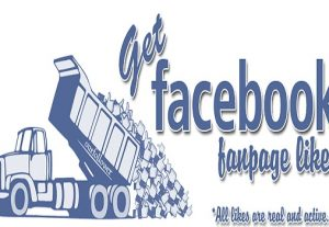 i will give 500 facebook fan page like