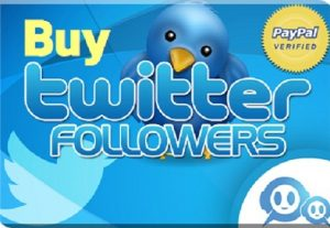 i will give 1,000 twitter followers