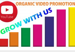 I will do YouTube organic Video views promotion