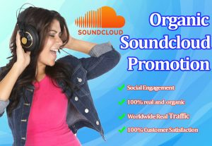 I will provide you 1000 soundcloud followers