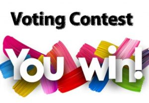 I can Provide 150 Any Online contest Votes Super Fast for $5