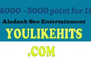 12000 youlikehits points for you for 3$