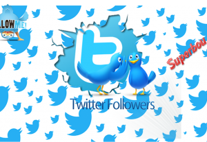 I will Give you 500+ Twitter followers +10 Likes High Quality
