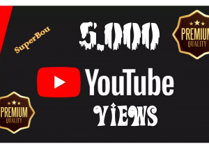 I will Give you 5.000 Youtube Views HQ To Upgrade your video
