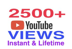 I will provide 2500+ youtube views instantly & lifetime guaranteed !!!