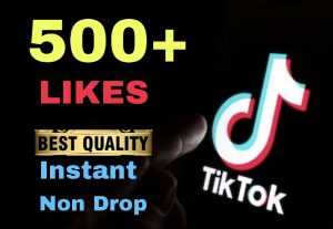 I will provide 500+ TikTok LIKES Instant & Non Drop !!!