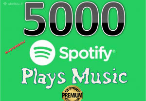 Get 5.000 HQ Spotify Plays Music Promotion Target Audiences