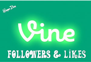 I will give you 200 Vine Followers/likes/revines