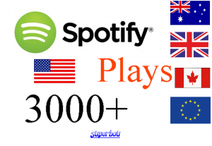 I will give you 3000 Spotify Target ORGANIC Plays from USA/CA/EU/AU/NZ/UK