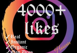 Get instant 4000+ likes in your Instagram post at instant with HQ,Real & Non Drop.