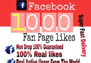 I will Promote 1000+ Facebook Fan Page Likes or page like or photo like
