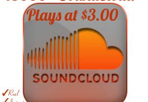 I will provide you 15000+ Plays for your SoundCloud Tracks with Real, HQ and 100% Organic at Instant.