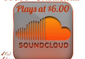 I will provide you 30000+ Plays for your SoundCloud Tracks with Real, HQ and 100% Organic at Instant.