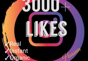3000+ likes at instant with HQ, Real & Non Drop Guaranteed!!