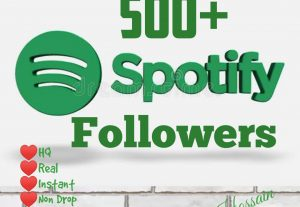Get 500+ Real Active Followers with HQ & lifetime guarantee.