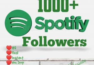 Get 1000+ Real Active Followers with HQ & lifetime guarantee.