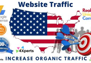 9000 + USA Targeted High-Quality Traffic  | Good For Ranking &  Safe For Your Adsense