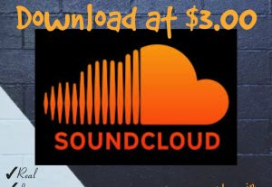 I will provide you 2500+ Downloads for your SoundCloud Tracks with Real, HQ and 100% Organic at Instant.
