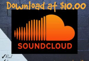 I will provide you 10000+ Downloads for your SoundCloud Tracks with Real, HQ and 100% Organic at Instant.