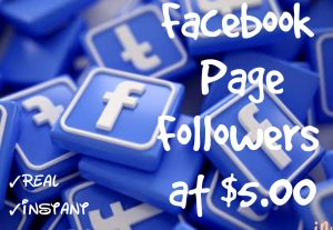 Promote your Facebook Page with 500+ Followers at Instant with High quality Promotions,Real and 100% Organic.