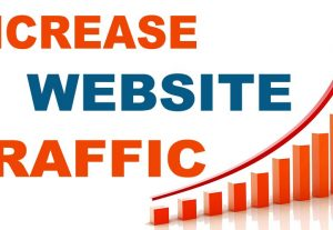 i will add 5,000 website views