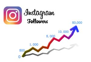 I will give you 300 Instagram Followers