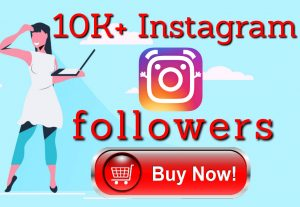 I will do grow your 500 instagram followers
