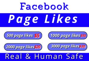 I will provide you 500 facebook page likes