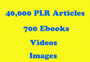 40,000 PLR Articles 700 EBooks 100,000 Images 370 Videos – On Health Fitness