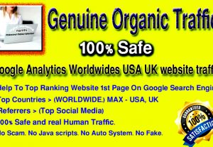 I will send Google Analytics Worldwide USA UK Website Traffic with Guarantee