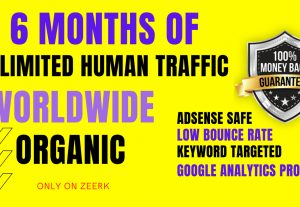 Get UNLIMITED and Genuine Real Website TRAFFIC for 6 months