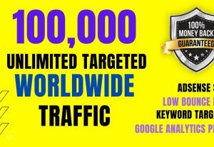 I Will Send You Real 100,000 Real Web Traffic To Your Website