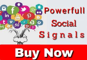 I will do Build 3K Powerful Social Signals for $3